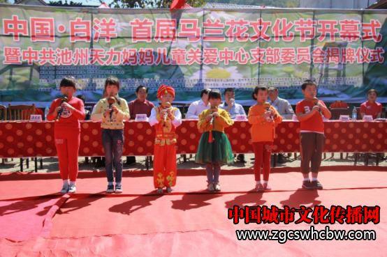 白洋首届马兰花文化节开幕,池
